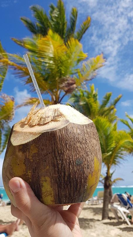 Kokos, degustacja, Dominikana