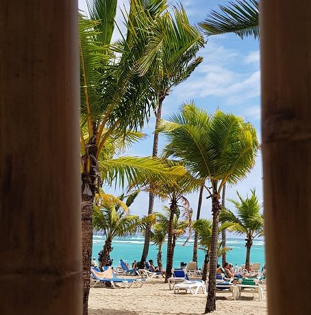 Dominikana, plaża z palmami