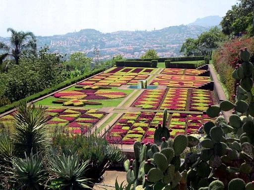 Gdzie znajdują się najpiękniejsze ogrody botaniczne Europy? Zapraszamy na ich odkrywanie.