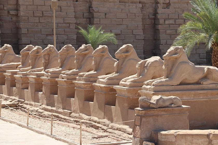 Egipt - aleja sfinksów łączaca Karnak z Luksorem licząca 3km