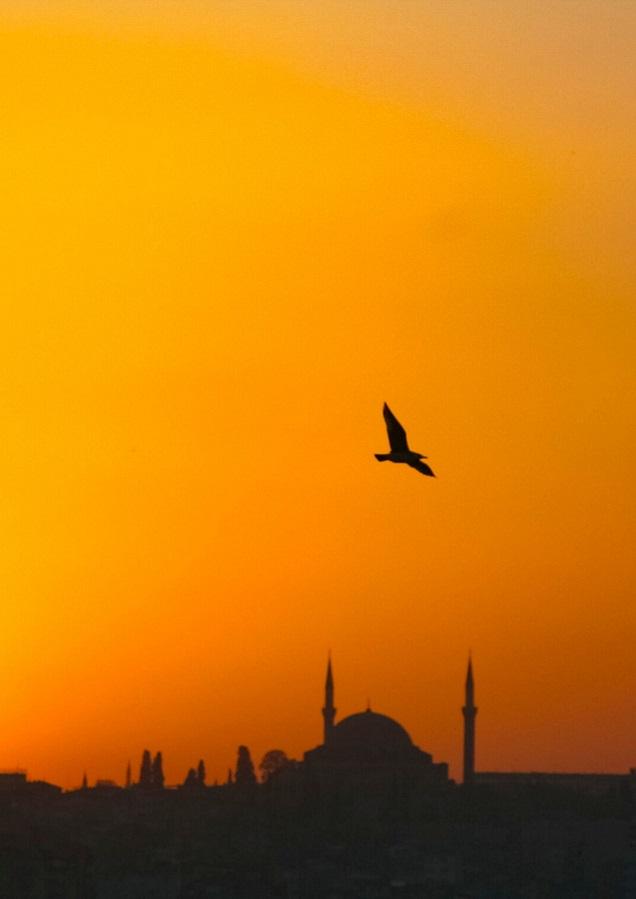 Turcja, Istambuł