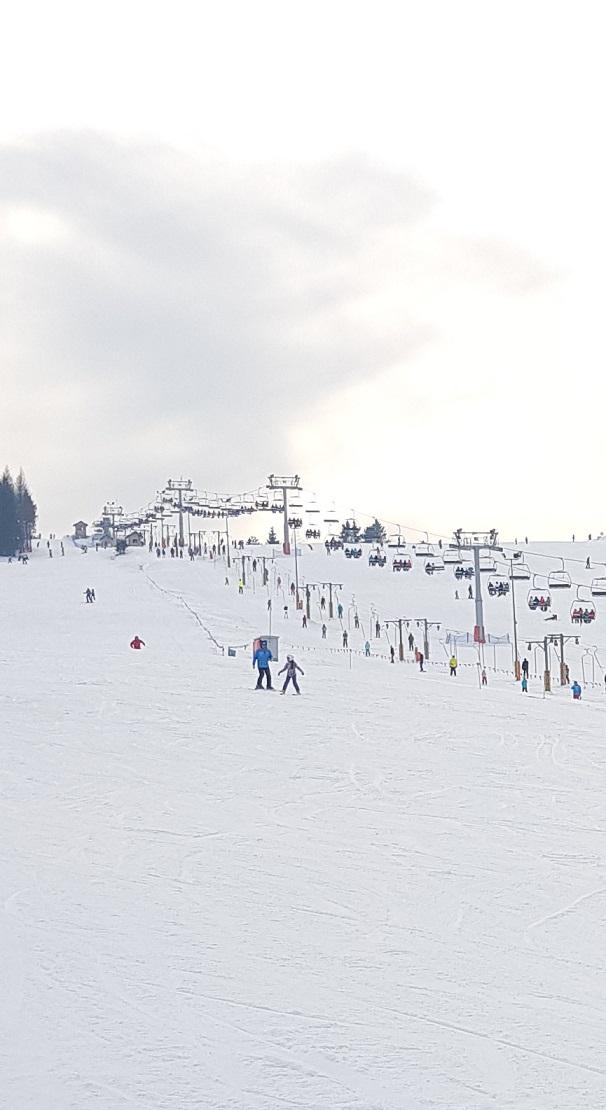 Wyciągi narciarskie, rodzaje