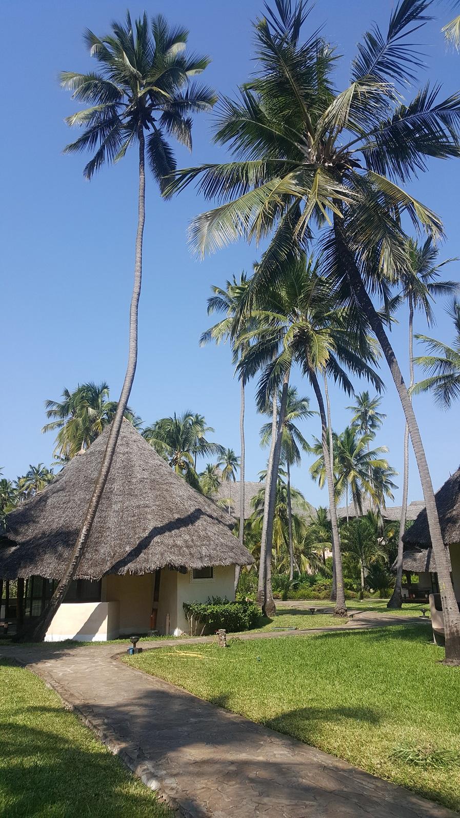 Zanzibar, lokalny hotel