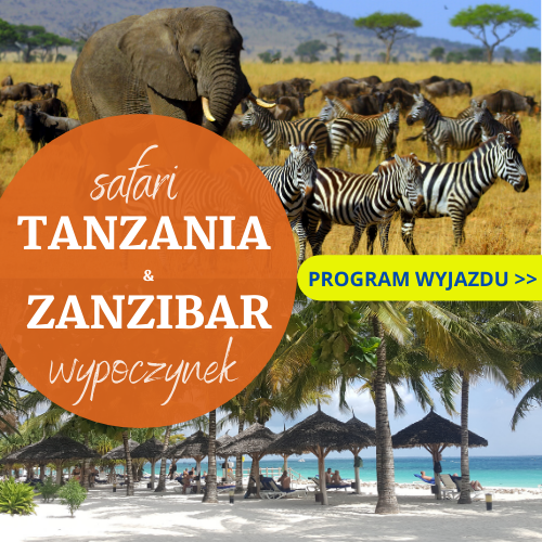 Tanzania, Zanzibar, last minute